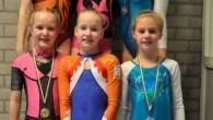 STIENS – Afgelopen zaterdag was voor de turnsters van WSBF de eerste plaatsingswedstrijd wedstrijdgroep 5.In de eerste ronde pakte Annieck Wiersema ondanks een val bij vloer het zilver.Bij Jeugd E.Met […]
