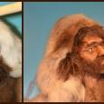 BUITENPOST –Wie het IJstijdenmuseum binnenstapt, maakt kennis met De Oerboeren (Neanderthalers) die u een kijkje geven in hun gereedschapskist en hun menukaart. In januari 2014 werden de vitrines aangepast voor […]