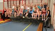 KOLLUMERZWAAG –Afgelopen week namen veel meiden uit Kollumerzwaag afscheid van hun enthousiaste gymjuf. Na 16 jaar trouwe dienst voor de recreatiegym bij SVK houdt Jitske Oevering het voor gezien. Als […]