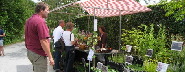 BUITENPOST –Botanische tuin De Kruidhof doet op zaterdag 11 juli 2015, in samenwerking met imkervereniging Kollumerzwaag e.o en NME-Achtkarspelen, weer mee aan de landelijke open imkerijdagen. De imkervereniging geeft voorlichting […]