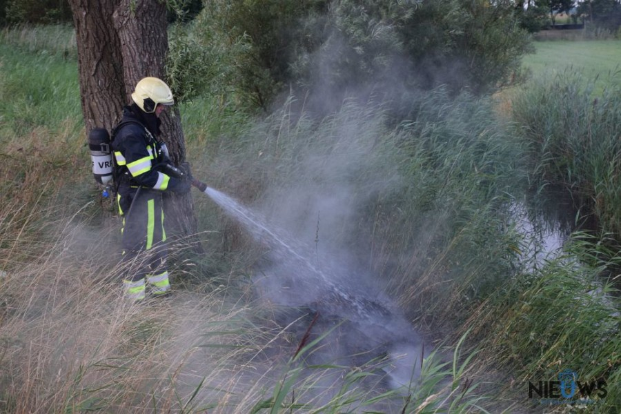 Photo of Riet in brand langs Trekwei Westergeest