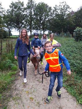 """Photo of Kids Knuffelen met dieren op """"Rens Ranch Augstinusga"""