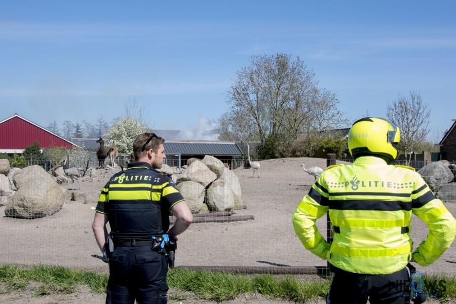 Photo of Brand in Zwagerbosch snel onder controle