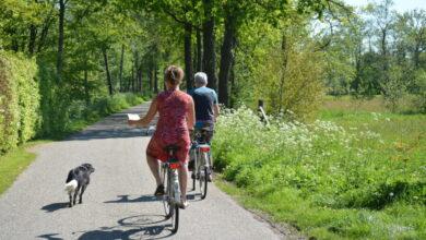 Photo of Rûntsje troch de Wâlden fietsen kan binnen corona regels